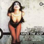 Mind the Gap 31